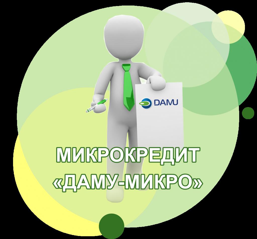 damu-micro